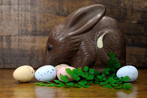 Happy Easter Australian style chocolate easter egg bunny Bilby a